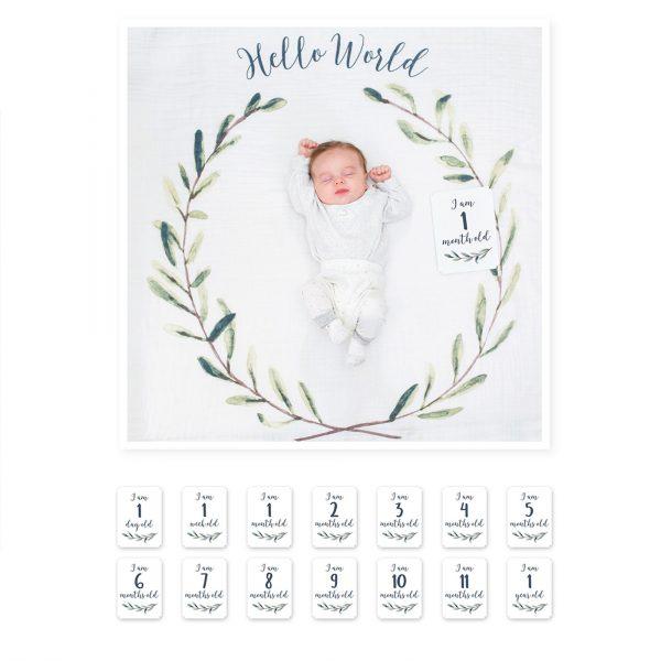 Milestone cards baby